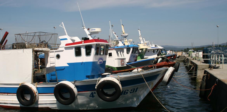 El puerto pesquero de O Grove
