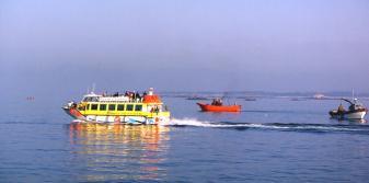 Catamarán cerca de los barcos de pesca