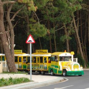 tren turístico entrando en el puente de La Toja
